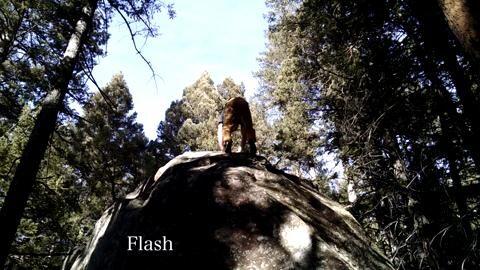 Jimmy Webb: The Game - Colorado Short Clip
