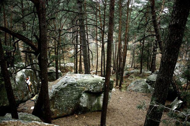 KL CEWE Fotowettbewerb 2013 Leserfotos Benjamin Kofler - Lesertext: Bild 1: Ein schöner Highball in Fontainebleau.  Bild 2: Irgendwo im Wald um Fontainebleau x neu