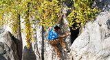KL Fontainebleau Bouldern 95.2