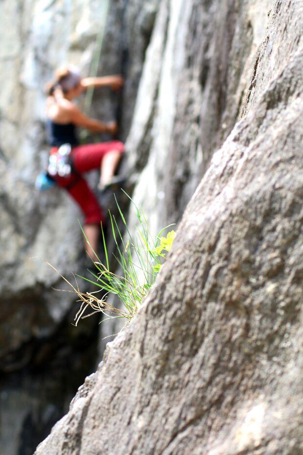 KL-Kletteropening-2013-c-Markus-Schwaiger-martina (jpg)