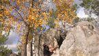 KL Vorstellung Essential Fontainebleau_5