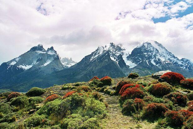 Kl-Torres-del-Paine-by_Silke-Bachmann_pixelio (jpg)