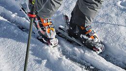 OD_0411_Alpecin Alpencross_Team_30 (jpg)