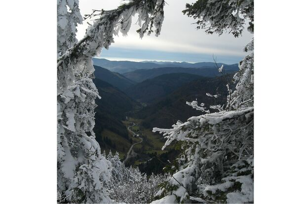 OD-Bergfotos-des-Jahres-Berglandschaft-Hermann-Holmgruen-Ottendorf (jpg)