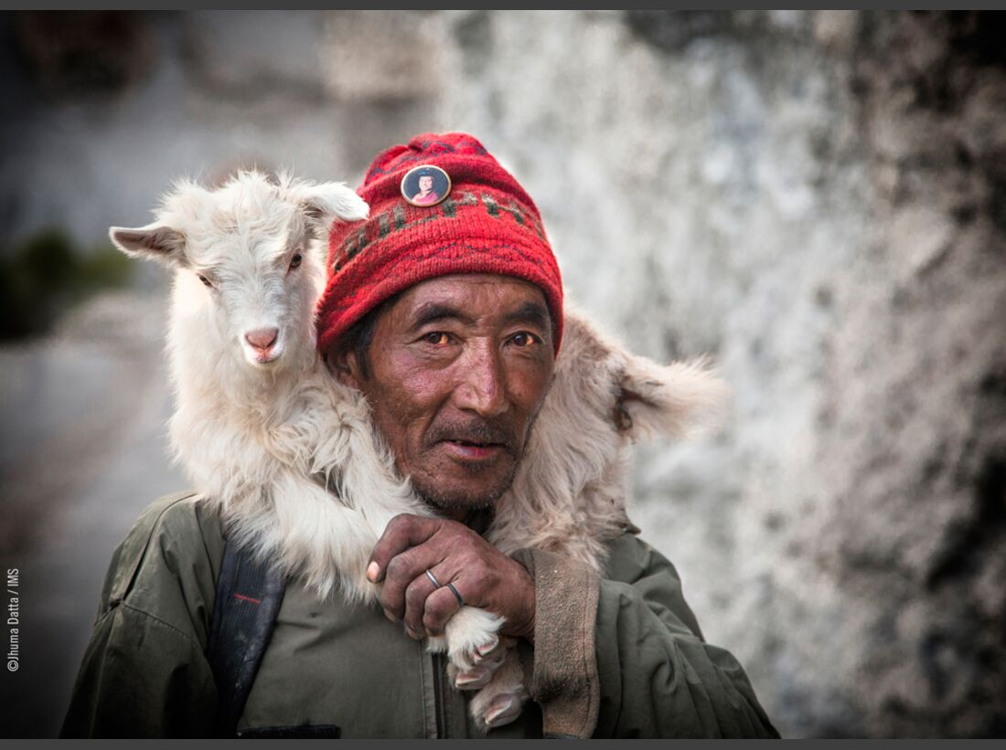 kl-ims-top100-bergbilder-jhuma-datta-cat4-14741018434745-2141 (jpg)