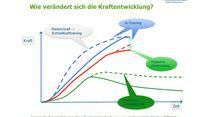 kl-klettertraining-trainings-periodisierung-koestermeyer-kraftentwicklung-slide-5 (jpg)