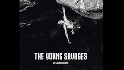 kl-the-young-savages-claudia-ziegler-buch-cover-teaser (jpg)